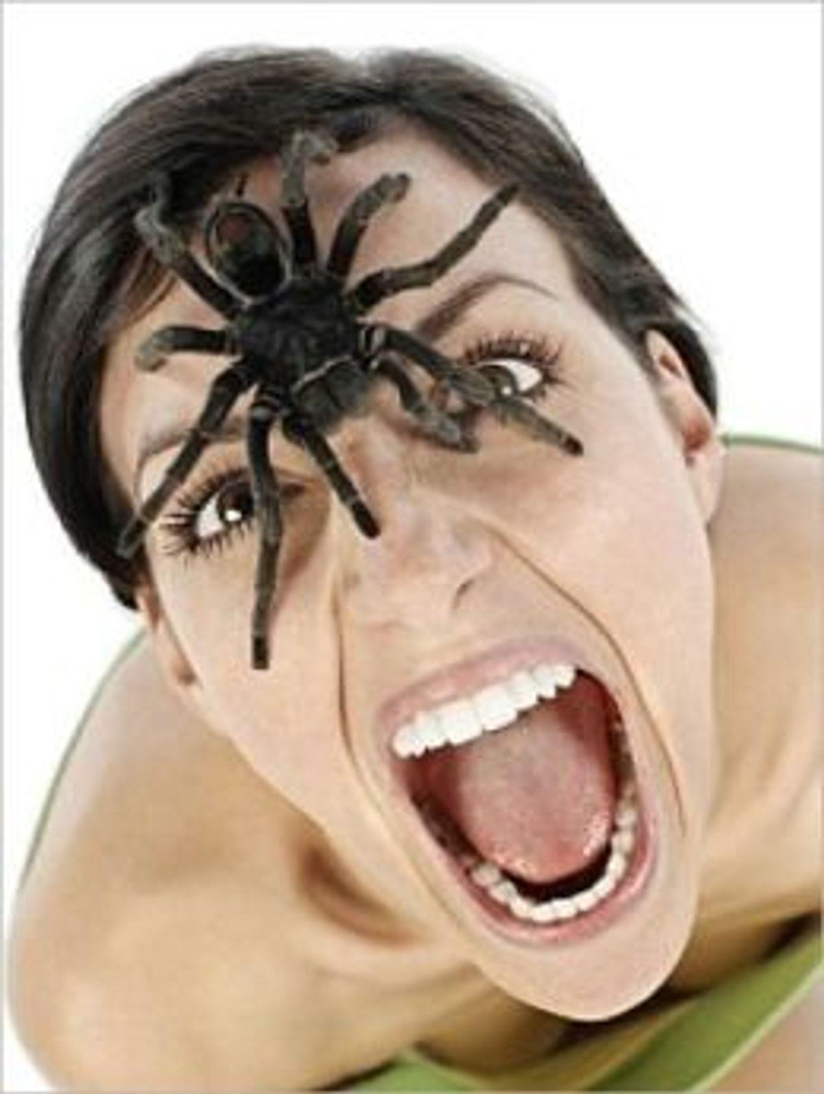 вечерами компе, вопрос паук ест людей картинки быть, кто-то