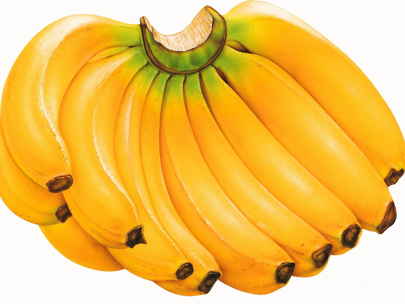 картинки забавного банана использовали громадные