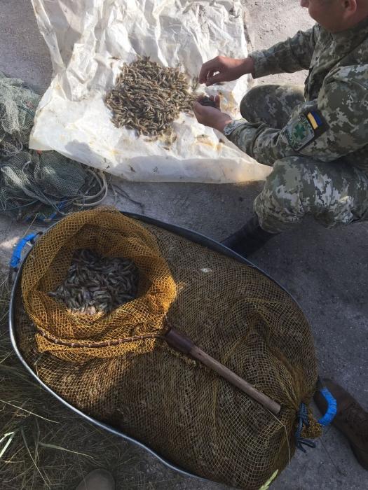 Незаконним виловом порушник завдав збитків рибному господарству більш ніж на 20 тисяч гривень