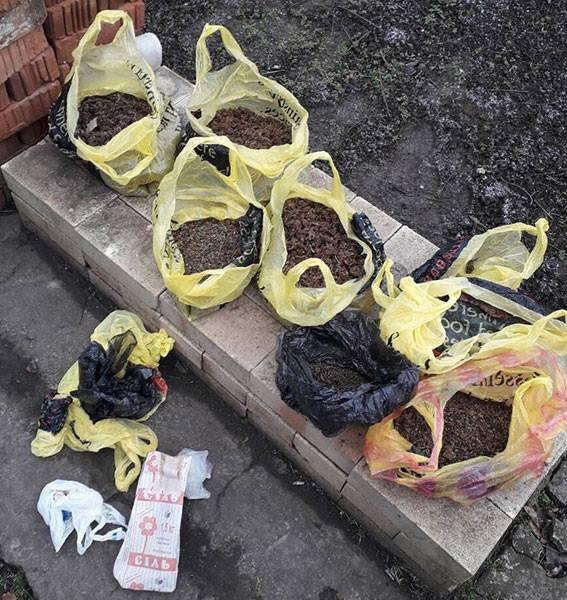 На Николаевщине у подозреваемого в угоне авто нашли около 25 кг каннаб