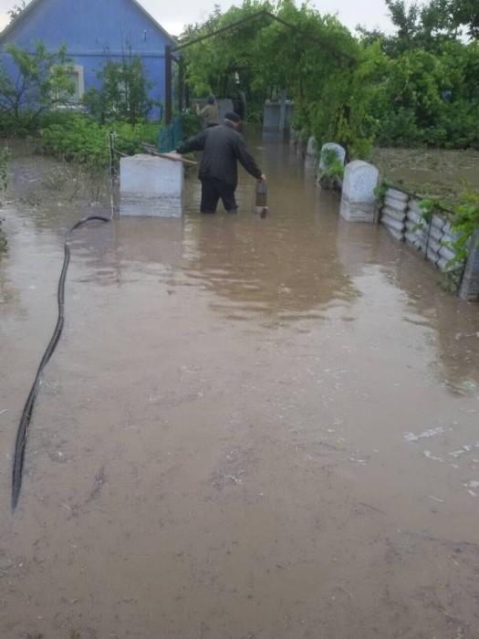 В Николаевской области непогода наделала беды: ливень топил дома, а ветер валил деревья