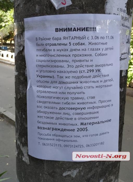 В Николаеве потравили собак: зоозащитники обещают $200 за информацию о догхантере