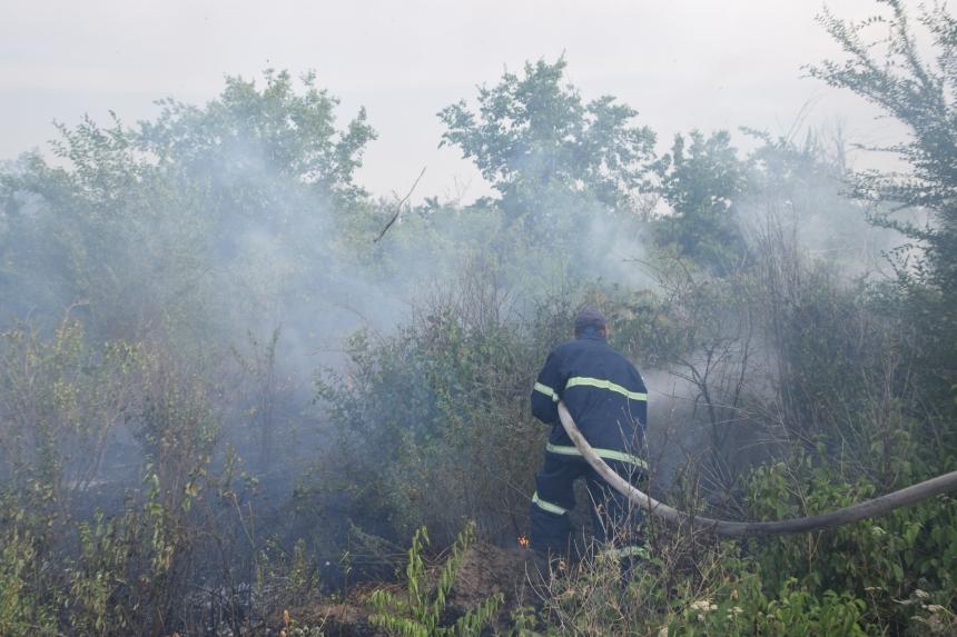 На Николаевщине горел 31 га территории