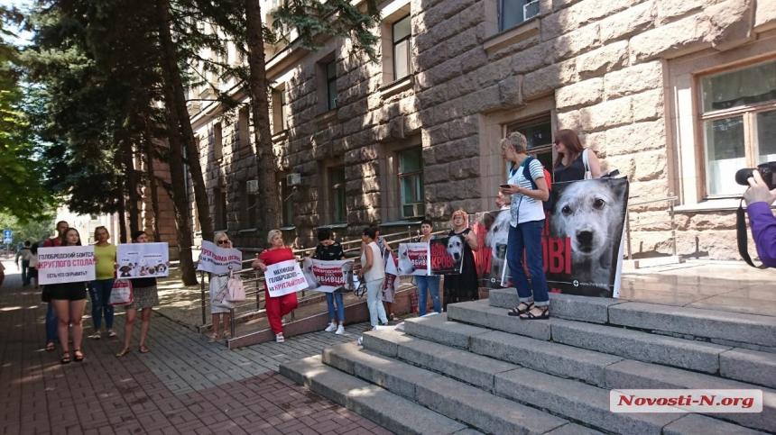 В Николаеве зоозащитники вышли с пикетом под стены мэрии
