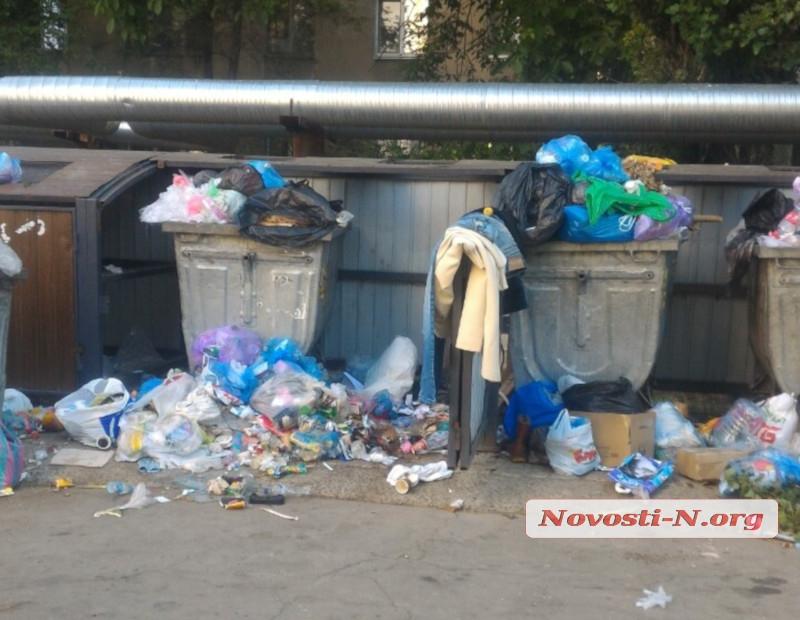 Смрад и зеленые мухи: в Николаеве жители жалуются на завалы мусора