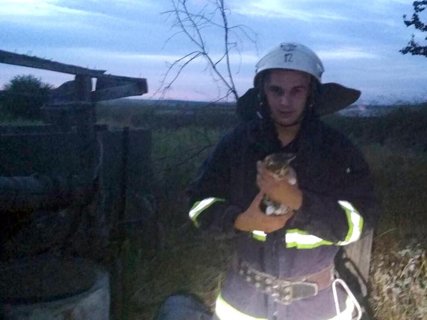 Николаевские спасатели  достали котенка из десятиметрового колодца