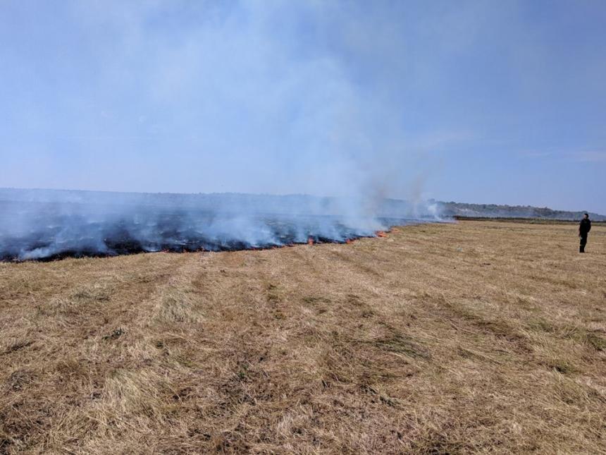 На Николаевщине за сутки выгорело 42 га открытых территорий, причина пожаров - поджог