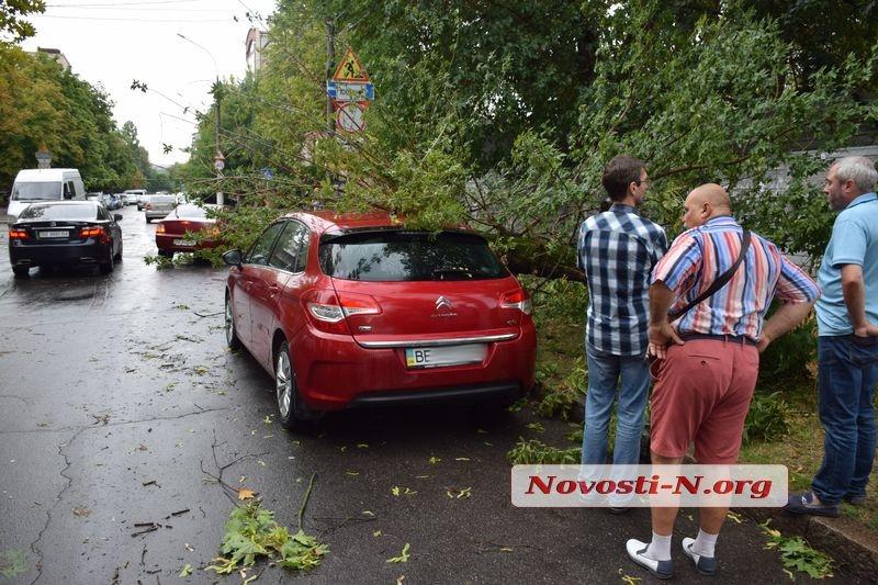 В центре Николаева дерево упало на припаркованный «Ситроен»
