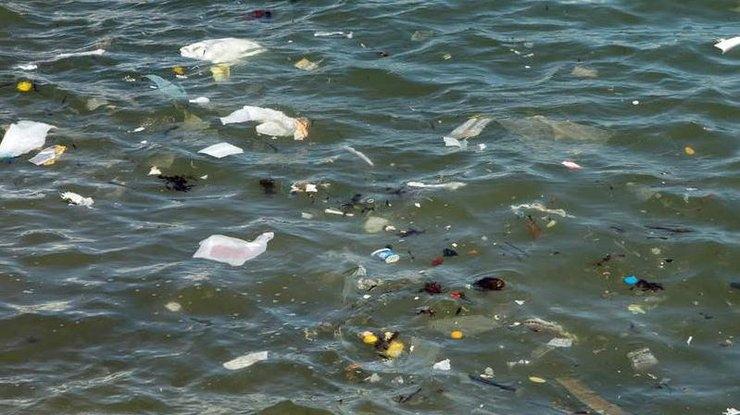 Черное море стало впервые грязнее Средиземного: назревает экологическая катастрофа. Новости Днепра