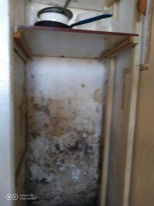 Стены в плесени и разбитые потолки: в сети показали общежитие НУК в Николаеве
