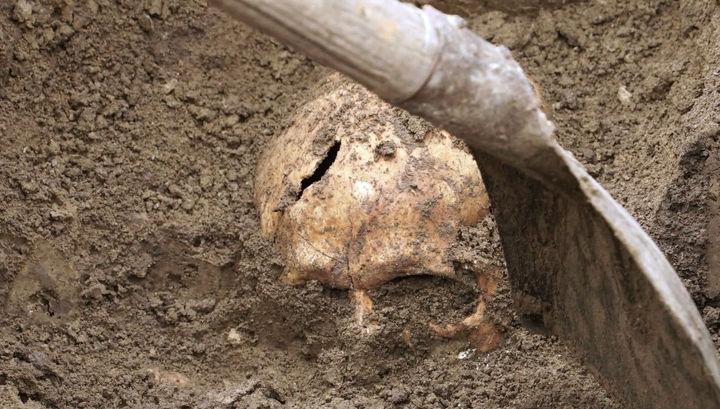 На Николаевщине люди возле дома нашли человеческий череп