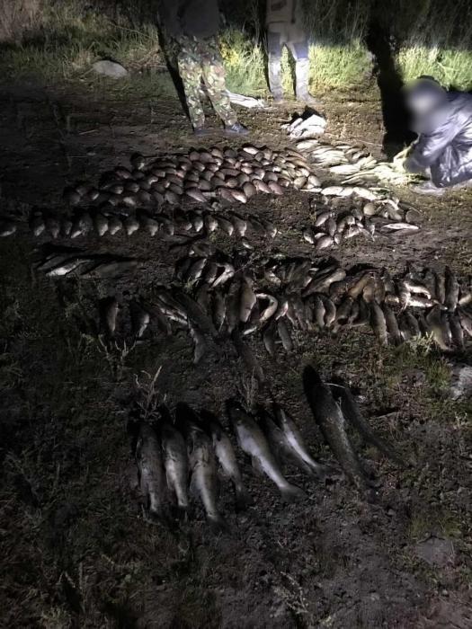 На Николаевщине словили браконьеров с электроудочкой — они нанесли убыток на 50 тыс грн