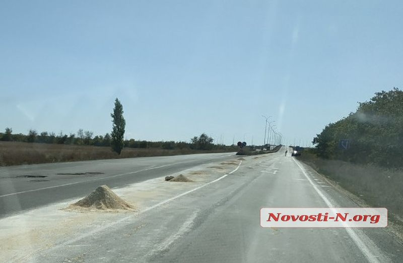 Под Николаевом зерновоз рассыпал более 10 тонн кукурузы