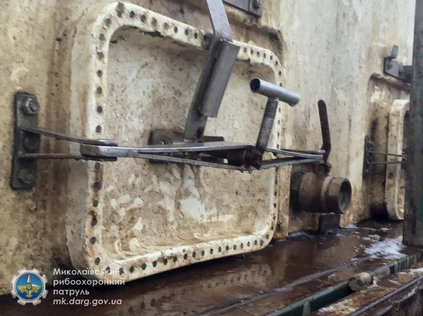 На Николаевщине в Южный Буг выпустили  более 18 тонн рыбы