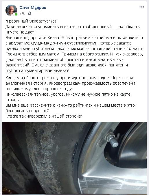 Экс-депутат влетел колесом в яму на трассе и назвал Николаевщину «убогим пятном»