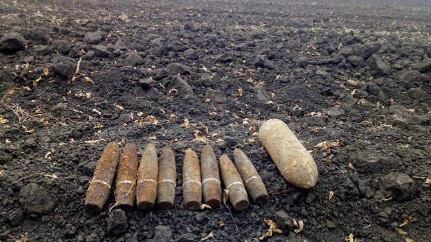 На Николаевщине житель обнаружил 9 артснарядов на своем огороде