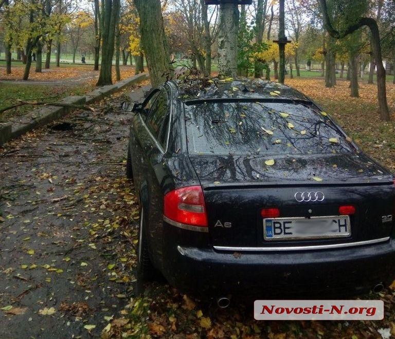 В Николаеве «Ауди» свалил дерево в парке — водитель скрылся на кабриолете