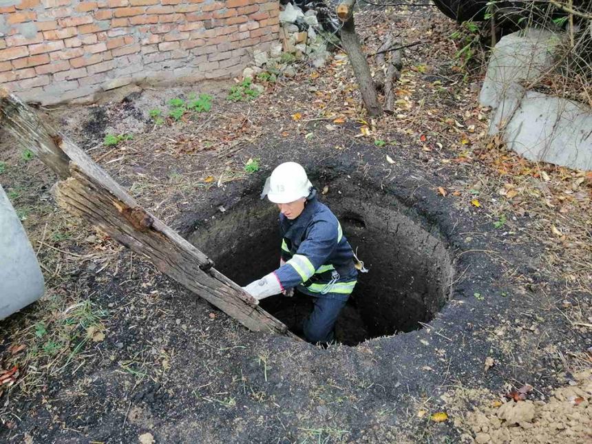 На Николаевщине спасатели помогли псу выбраться из ямы