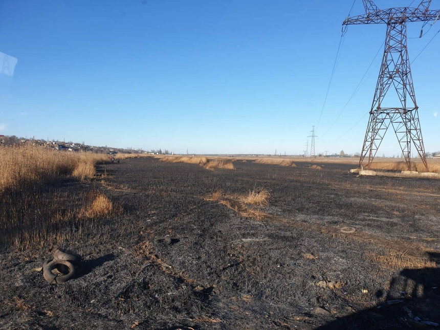В Николаеве во время пожара на Аляудах сгорело 3 га камыша