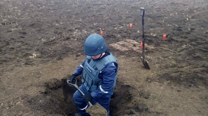На Николаевщине пиротехники уничтожили 26 артснарядов