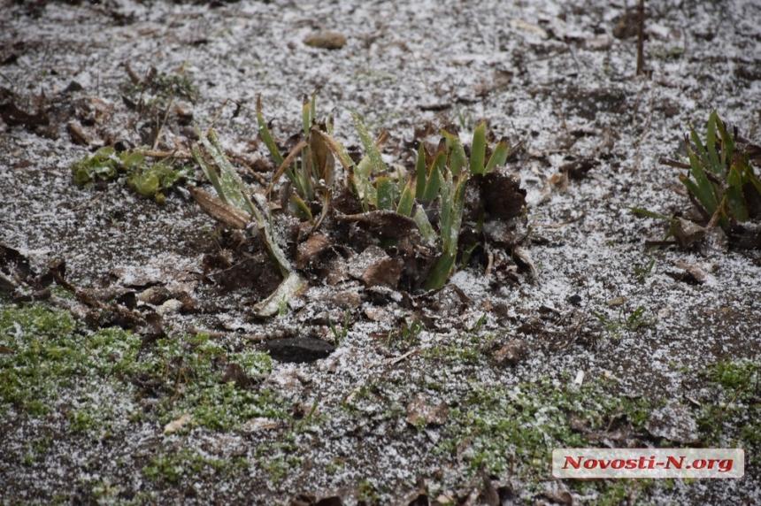В Николаеве прошел первый снег. ВИДЕО