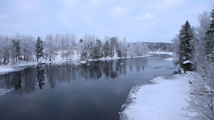 В Запорожской области три ребенка провалились под лед и погибли