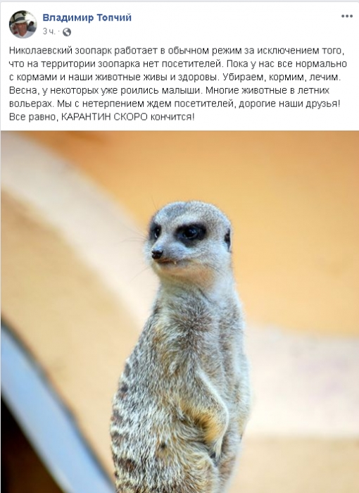 Карантин в Николаевском зоопарке: Топчий рассказал, хватает ли кормов для животных
