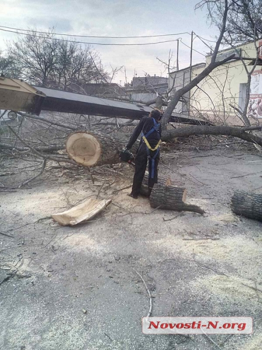 В Николаеве перевернулся подъемный кран