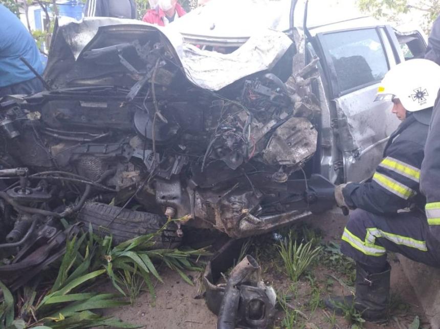 На Николаевщине «Форд» снес дерево, забор и врезался в электроопору: водитель погиб