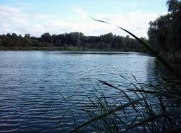На Николаевщине предприниматель не хотел добровольно возвращать государству арендованный водоем