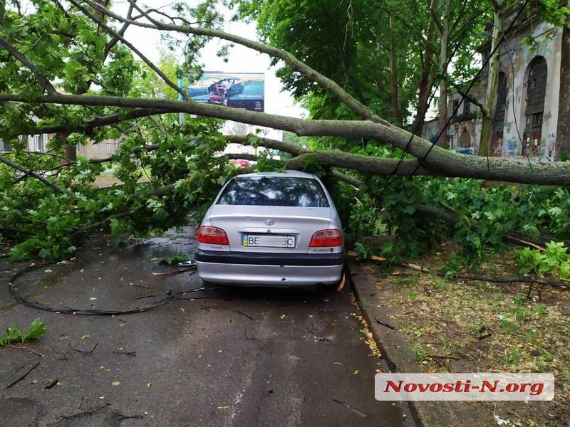 В центре Николаева штормовой ветер повалил огромную ветку на автомобиль