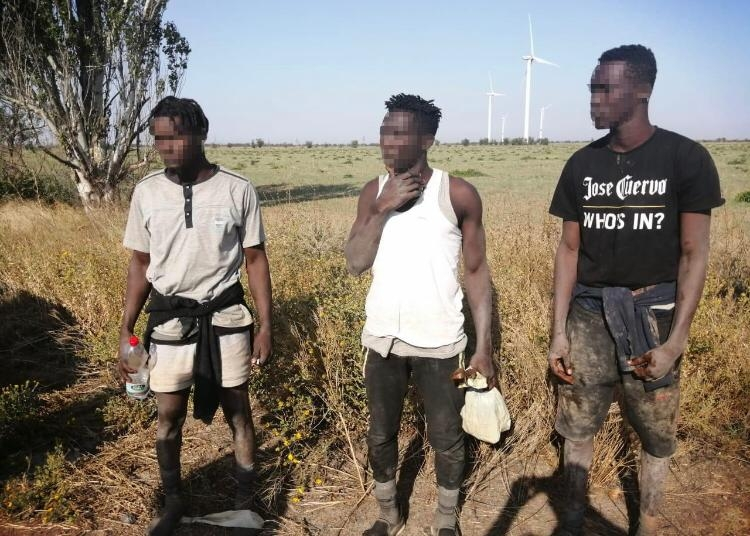 Под Очаковом задержали трех нелегалов, спрыгнувших с судна на спасательном круге