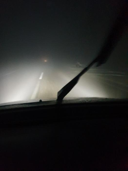 На дорогах Николаевской области сильный туман: видимость ограничена