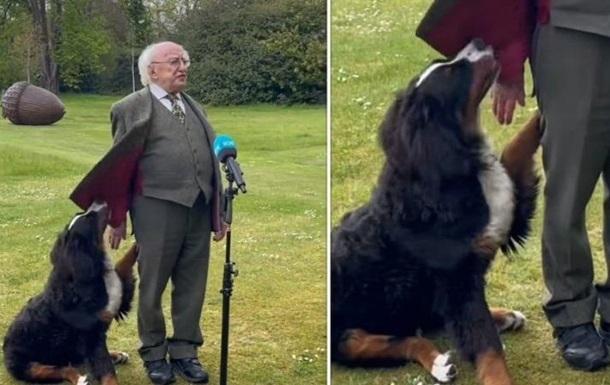 В выступление президента вмешался щенок. ВИДЕО