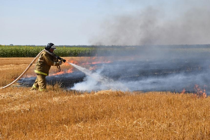 В Николаевской области за сутки выгорели 19 га открытых территорий