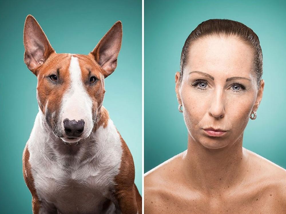 сравнить человека с животным по фото рассматривать