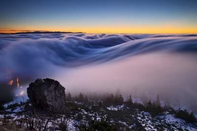 "Фотограф показал таинственную природу в ""объятьях"" тумана. Фото"