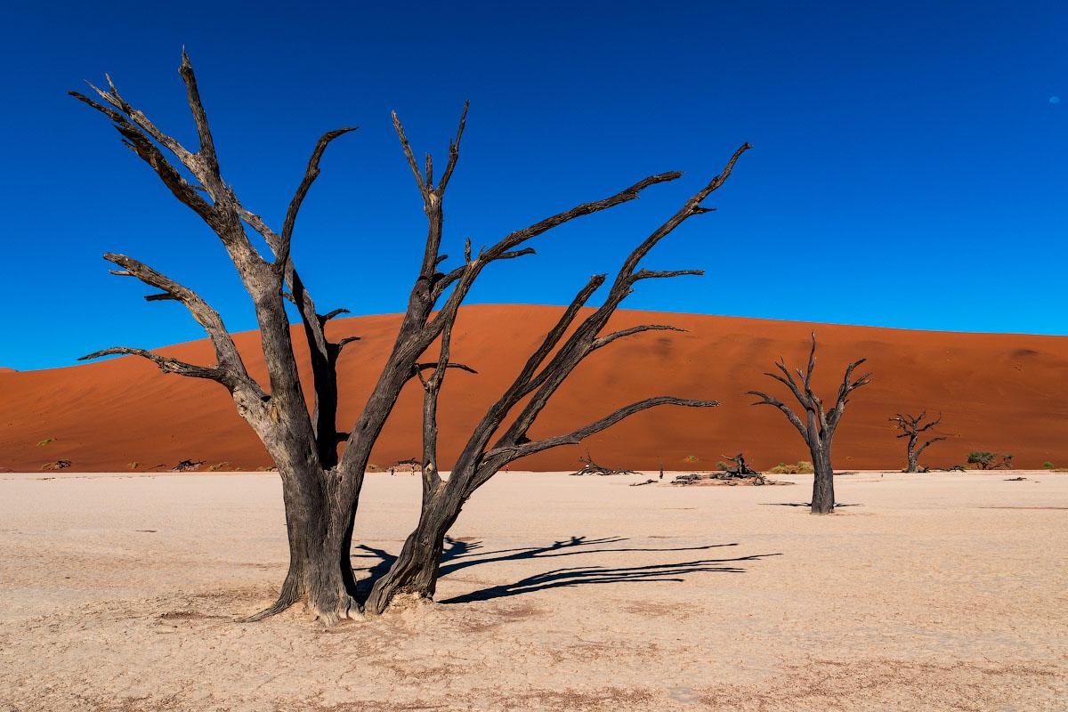 Пустыни намиб картинки