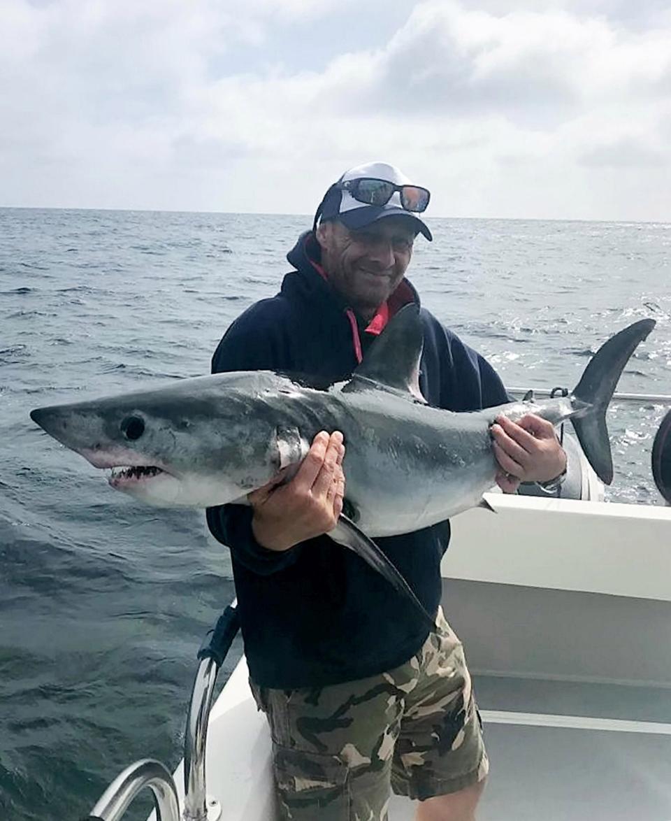 пластиковых ловля акулы картинки поможет список всех