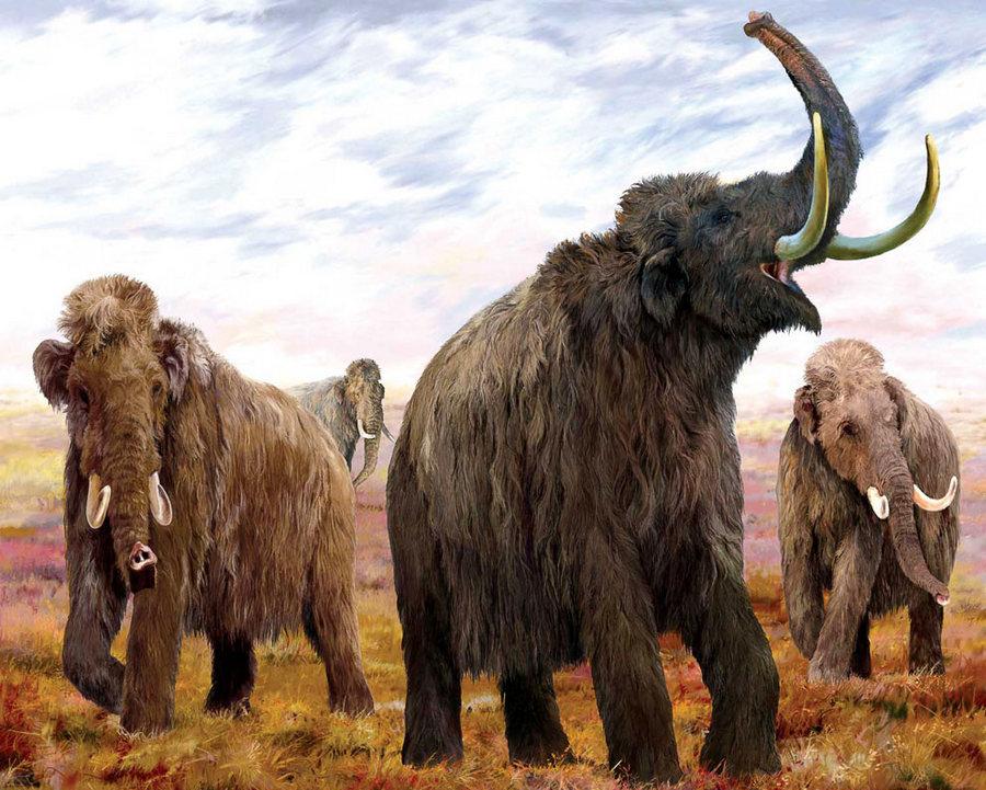 доисторические животные смотреть картинки преданиям