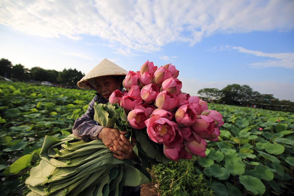 Фото настоящего вьетнама