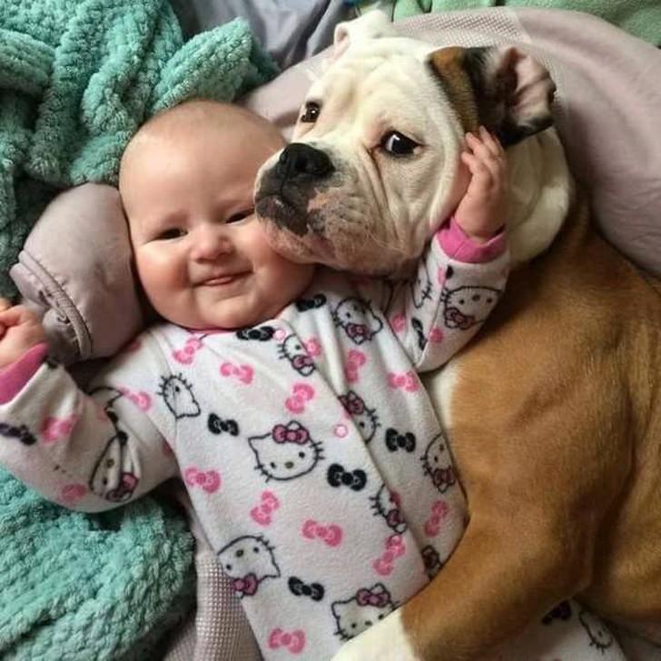 Смешные картинки дети и собака