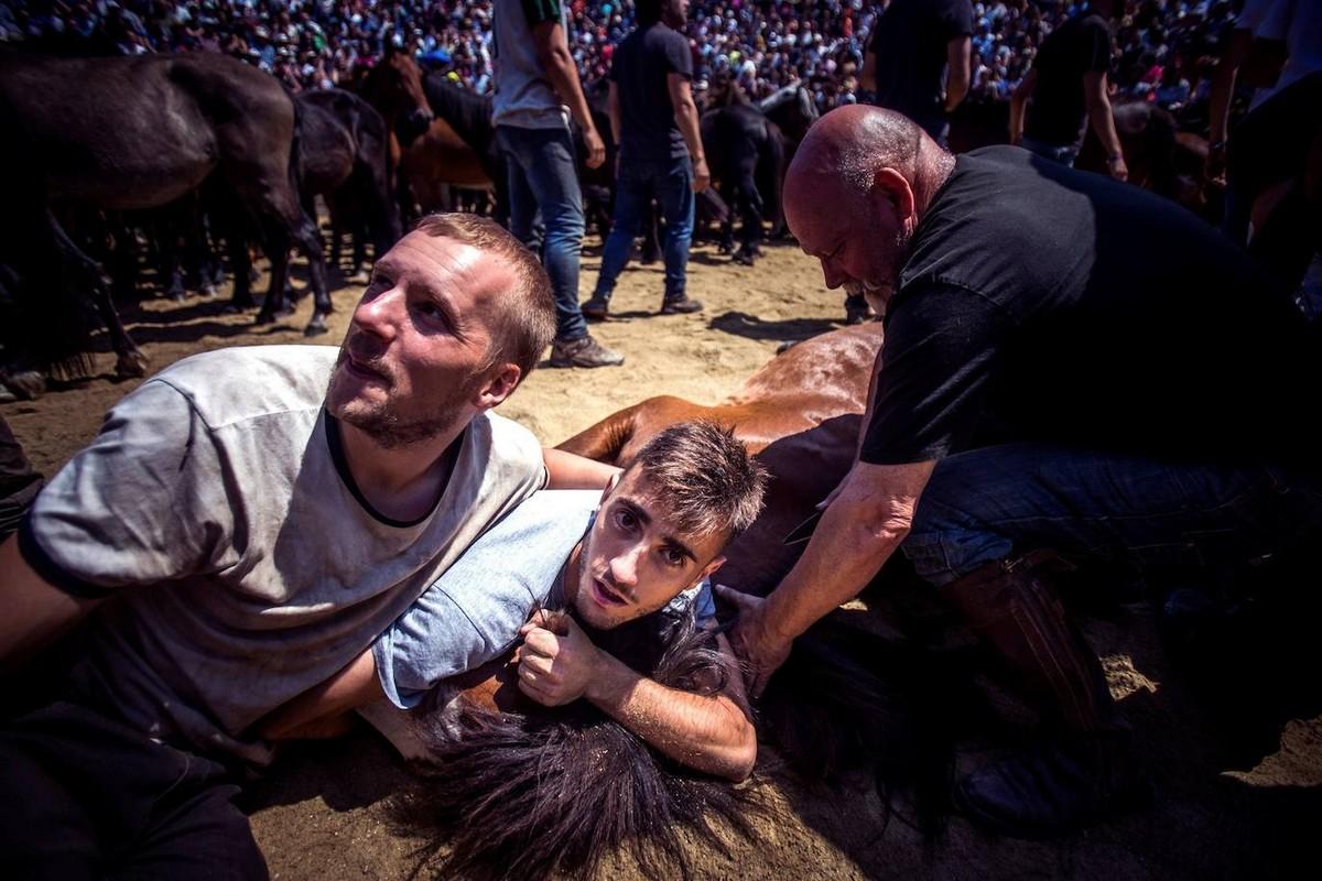 Традиционный праздник Рапа-дас-Бестас в Галисии
