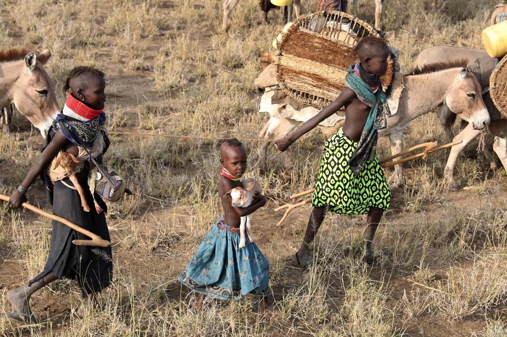 также представлена жизнь в африке в картинках арбенина хочет усыновить