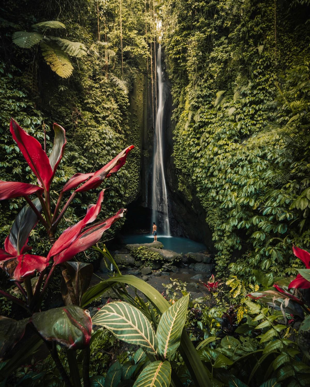 Красота природы на снимках конкурса #Nature2020
