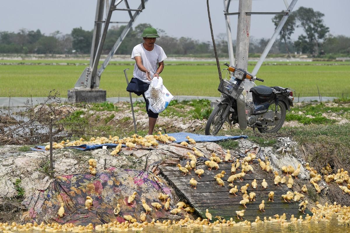 Повседневная жизнь во Вьетнаме
