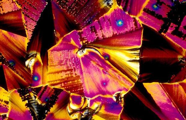 Популярные алкогольные напитки под микроскопом