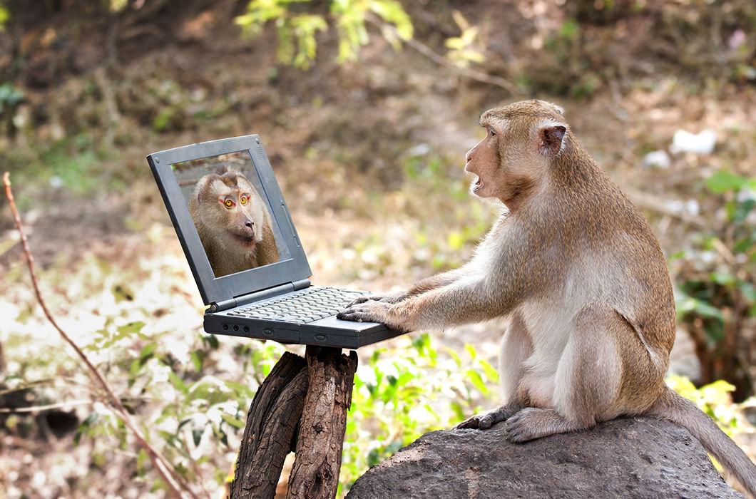 Фотоприколы и демотиваторы животные