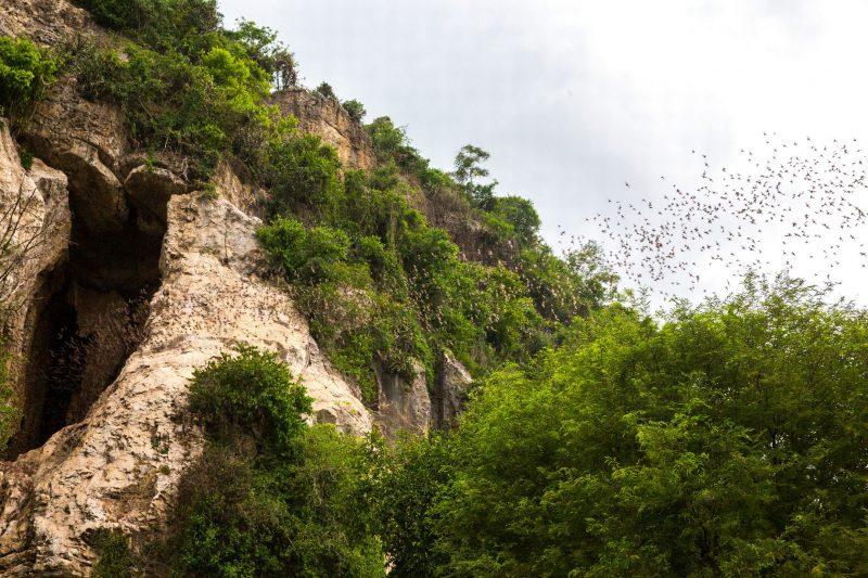 Нерукотворная красота: 12 самых удивительных пещер мира. ФОТО