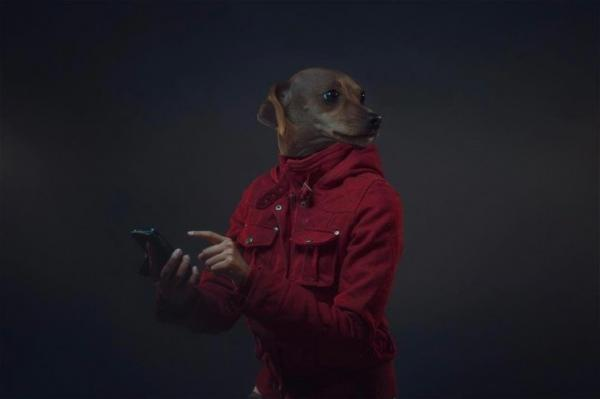 Что получится, если собак и их владельцев объединить в одно целое (ФОТО)